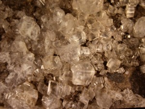 Rhombohedral calcite crystals, from Hazel Green, Wisconsin. Field of view is about 25 cm. UW–River Falls specimen.