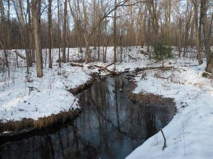 The Little Plover River in the winter (photo by Ken Bradbury)