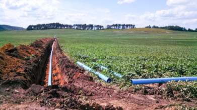 Trench and irrigation pipe in a field