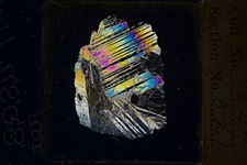 cross-polar light turns minerals present in a fine sliver of rock into stained-glass art